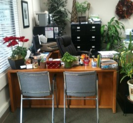 lia office reception